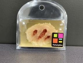 3D 실리콘 슬랩 4호-B